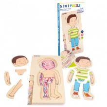 Anatomisk puslespil - Lille dreng