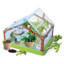 Drivhus - Lær om økologisk dyrkning