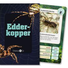 Kortspil - Edderkopper