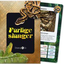 Kortspil - Farlige slanger