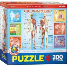 Puslespil - kroppen, 200 brikker