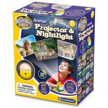 Projektor og natlampe - Vilde dyr