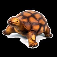 Skildpadde i naturgummi