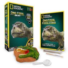 Udgrav dinosaur fossiler