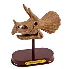 Udgravningssæt - Triceratops