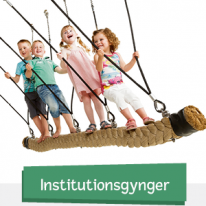 Institutionsgynger